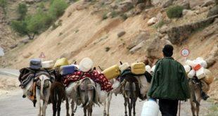اختصاص 1000 خودرو به ناوگان حمل و نقل عمومی عشایر کهگیلویه و بویراحمد - اجاره خودرو طباطبایی
