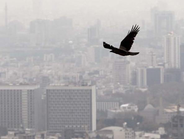 جلوگیری از آلودگی هوا با تعطیلی معادن شن و ماسه در فصل وارونگی دما - اجاره خودرو طباطبایی