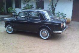 Fiat 1100 4 Door Sedan 3 264x178 به یاد فیات ۱۱۰۰، نخستین سدان مونتاژی در ایران   اجاره ماشین