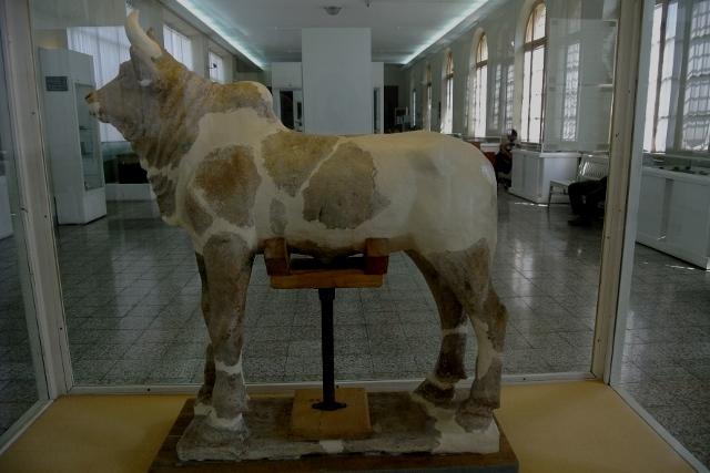 rent car Museum Ancient Iran 1 موزه ملی ایران با بررسی کامل این موزه   اجاره ماشین