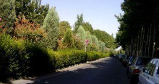 پارک پردیسان تهران - اجاره خودرو - اجاره ماشین