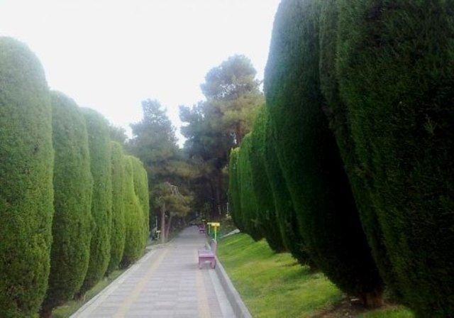 پارک ساعی تهران - اجاره خودرو - اجاره ماشین