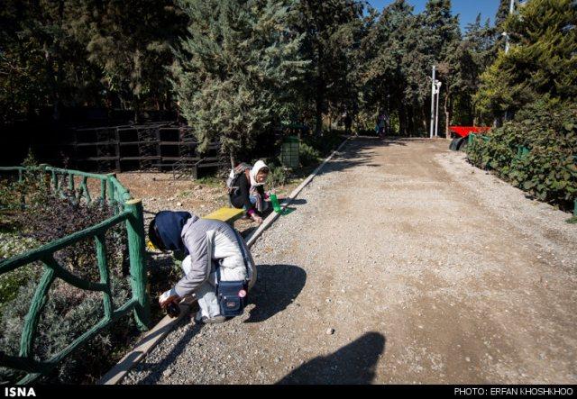 پارک طالقانی تهران - اجاره خودرو -اجاره ماشین